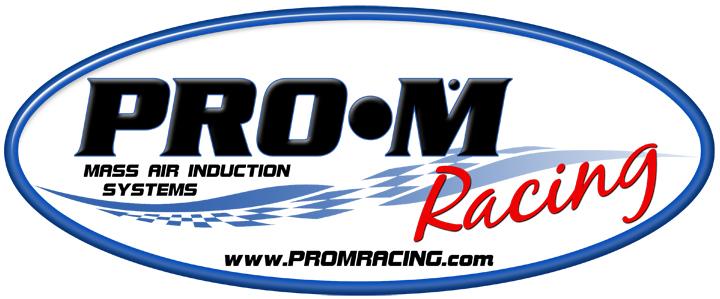 351 Windsor Pro-M EFI System